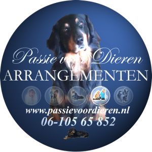 0-Website_NL_ARRANGEMENTEN-500